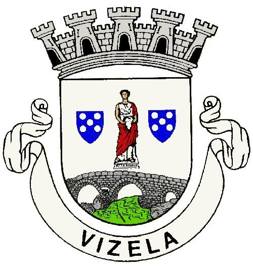 brasão.Município de Vizela.peq