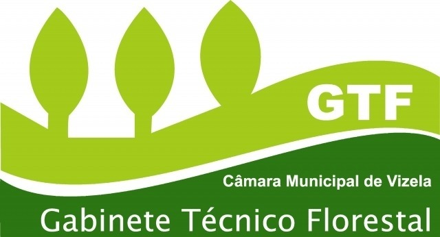 logo gtf