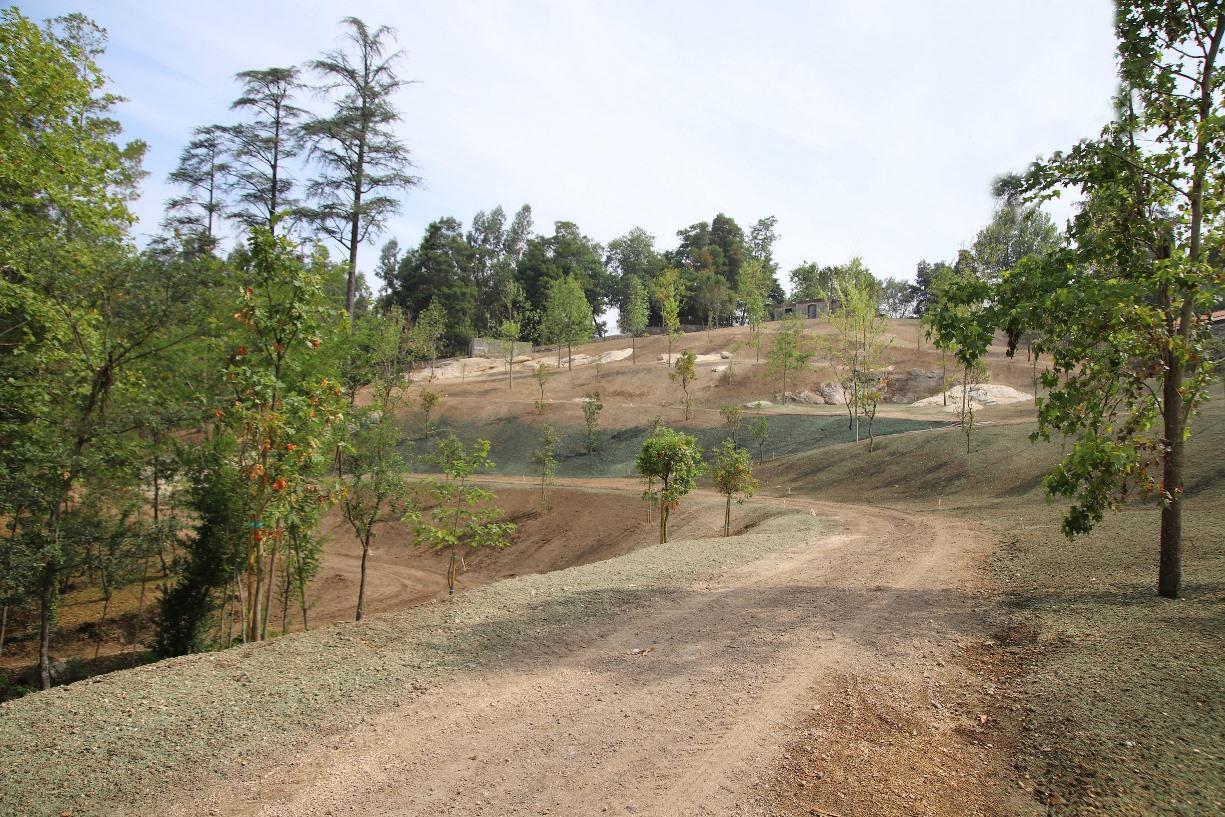 Inauguração da requalificação do 'monte' do Parque das Termas